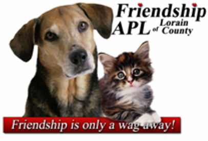 Friendship is Only a Wag Away!